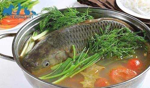 cá chép giòn nấu mẻ