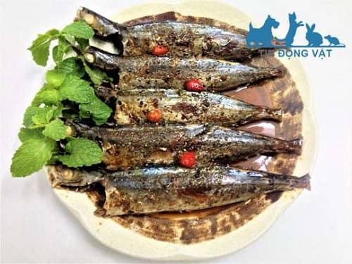 ăn cá nục có tốt không
